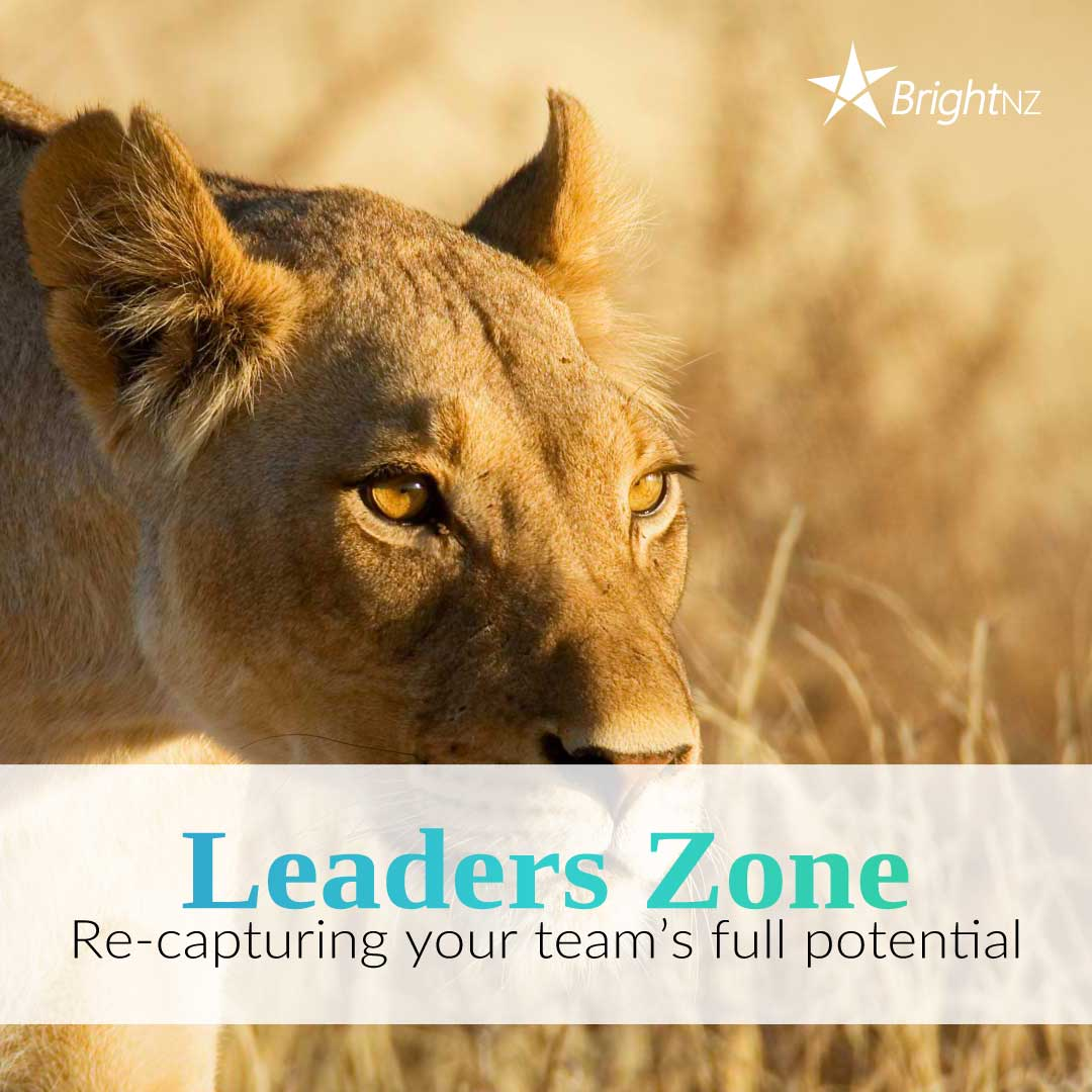 Leaders-Zone