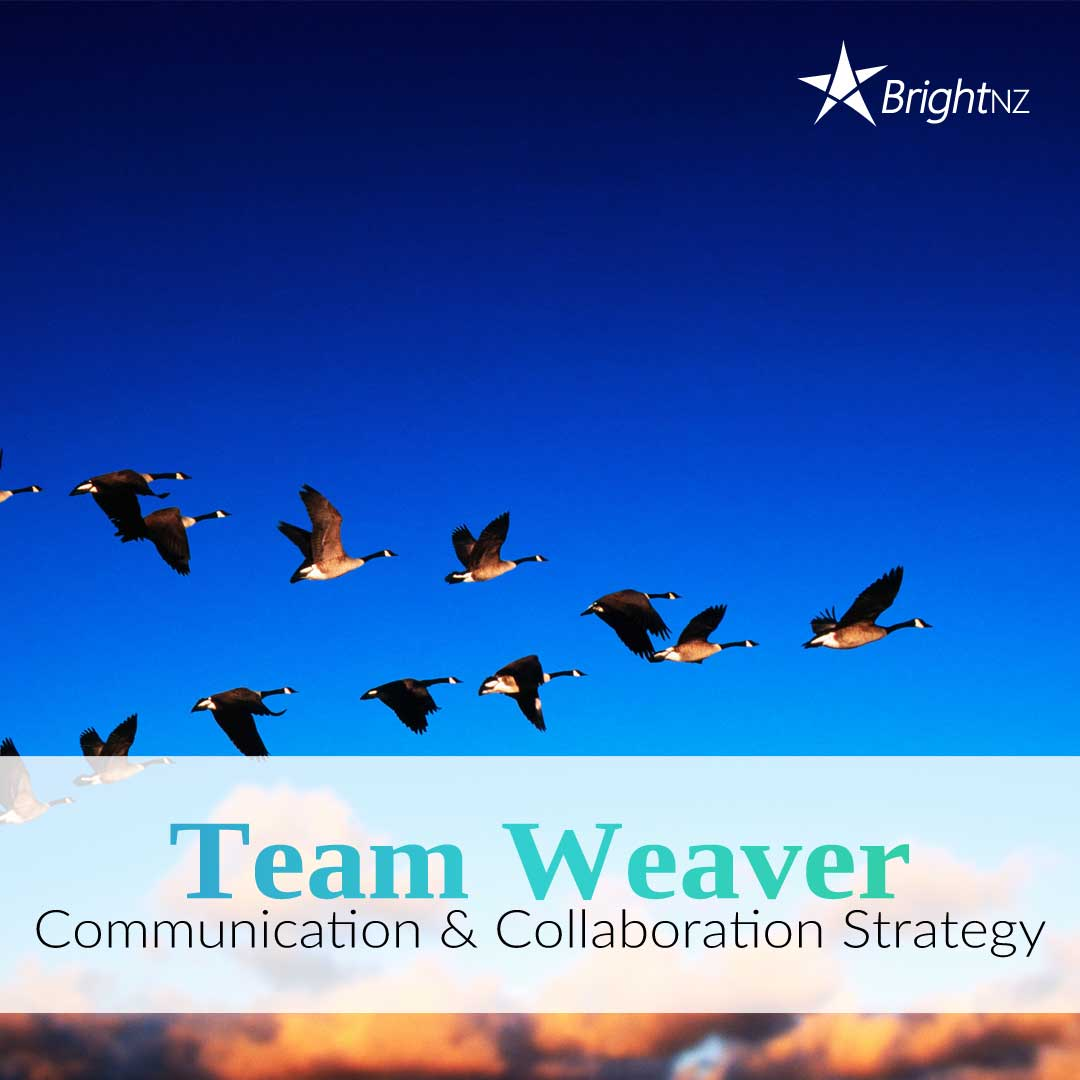 Team-Weaver